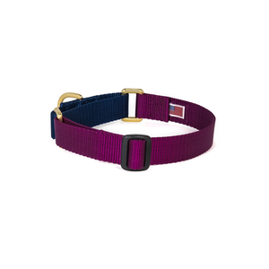 Dog + Bone Martingale Collar Purple & Navy