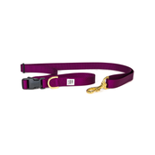 Dog + Bone Adjustable Leash Purple