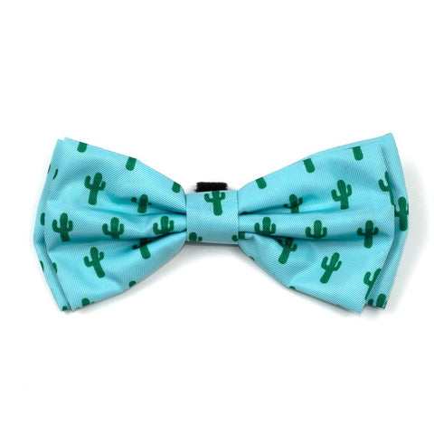 Worthy Dog Cactusb Bow Tie