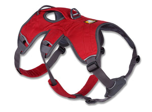 Web Master Harness Red