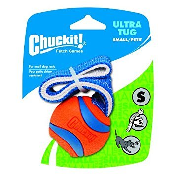 Chuckit Ultra Tug Ball Small