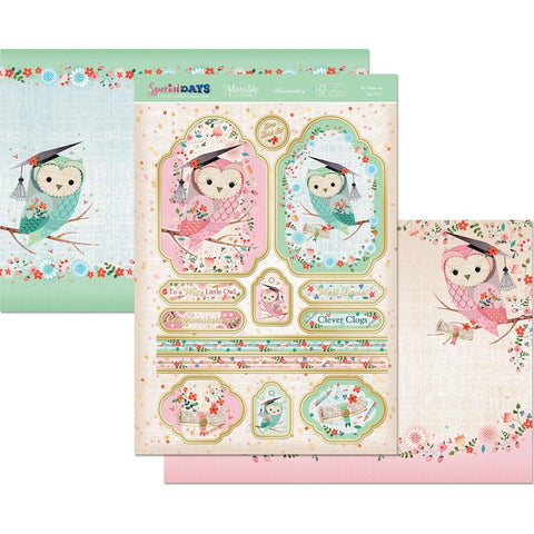 Hunkydory Special Days A4 Topper Set - As Wise As An Owl