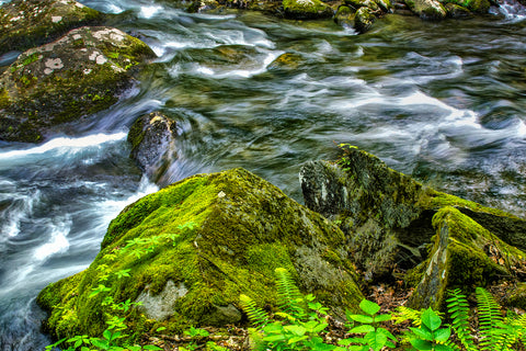 Shop for wild water large canvas prints