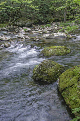 Rushing waters canvas picture prints
