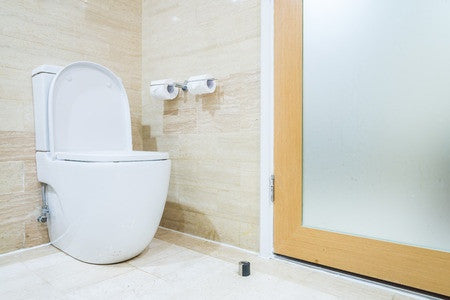 Shopping for Different Types of Toilets