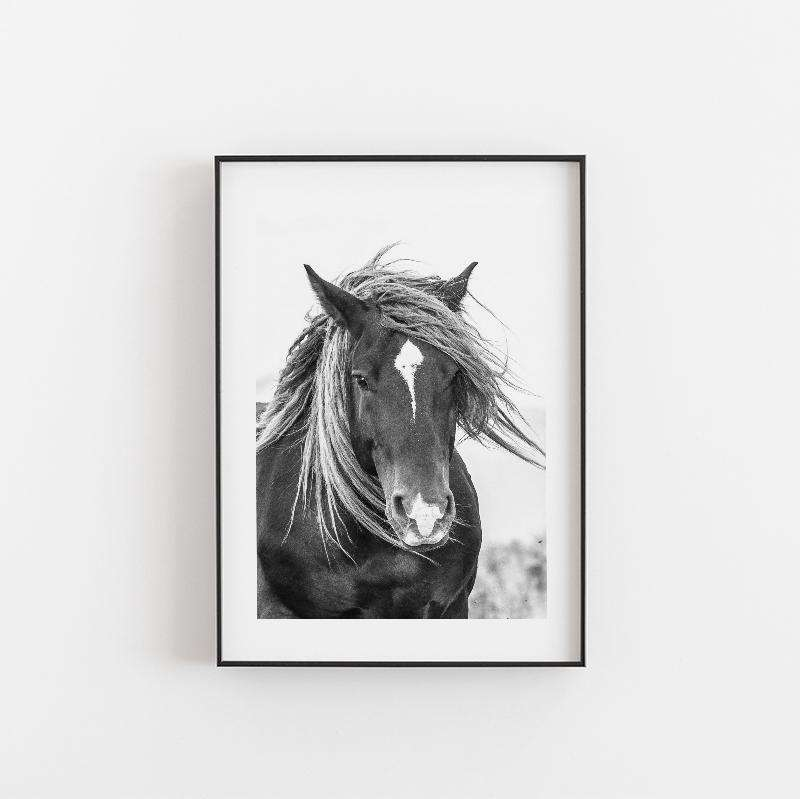 Simple Style Co: Mustang Black & White Art Print | Free Delivery
