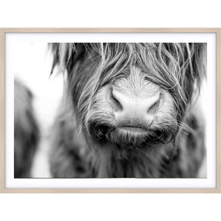 Highland Cow Print - Black and White | Simple Style Co