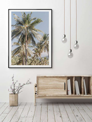 Donna Delaney Prints - Vintage Palms | Simple Style Co