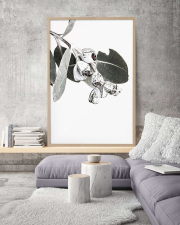 Donna Delaney Prints - White Gums| Simple Style Co