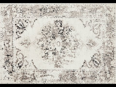 Alexa Black White Transitional Rug