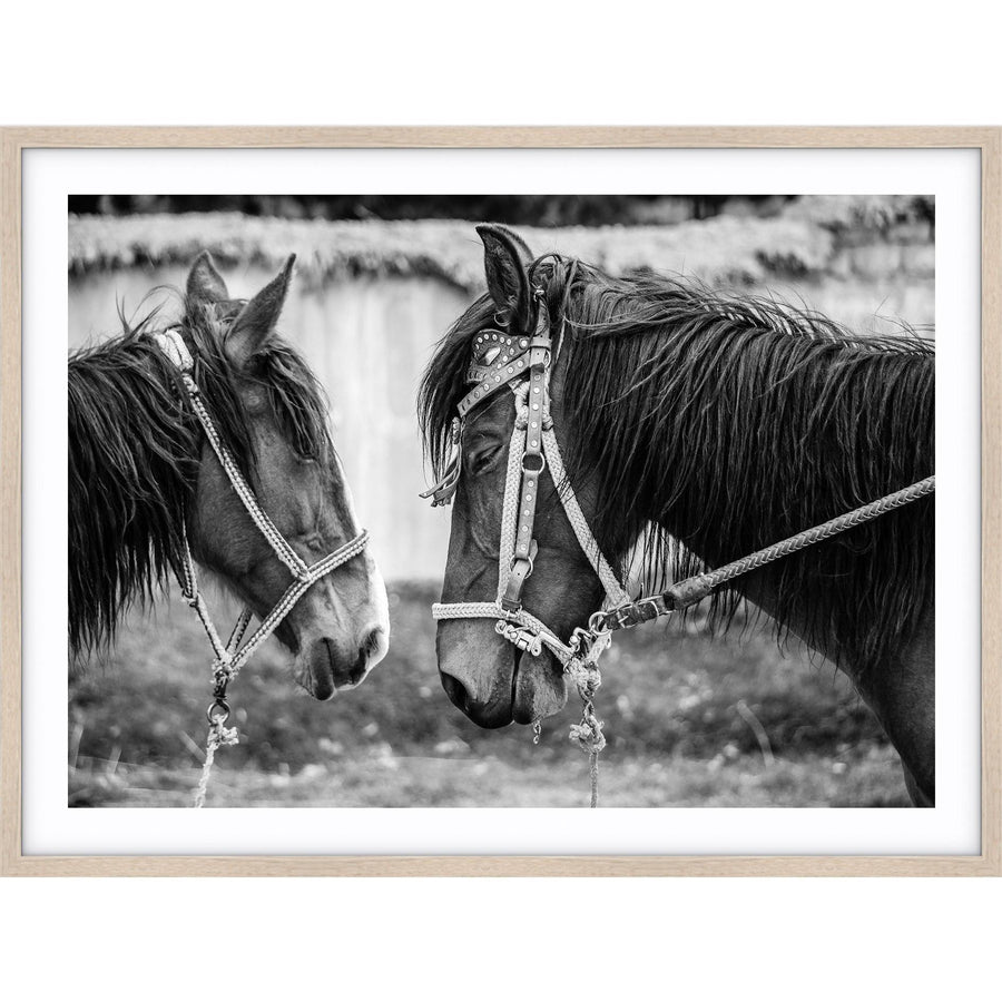Horses Print by Love Your Space - Simple Style Co