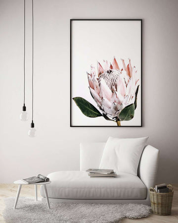 Pretty Protea - White - Simple Style Co