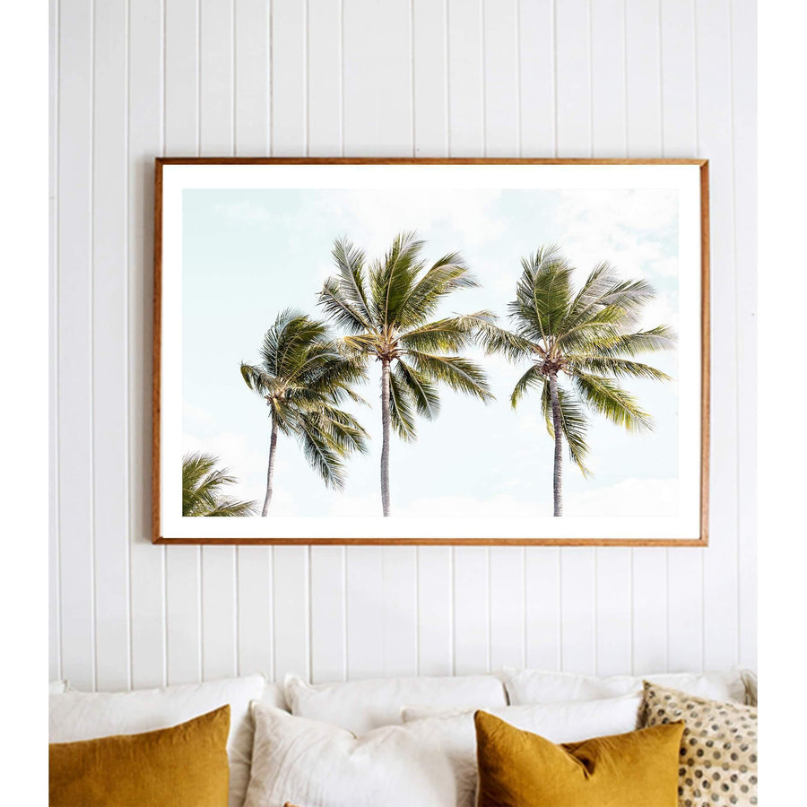 Tropical Palms II