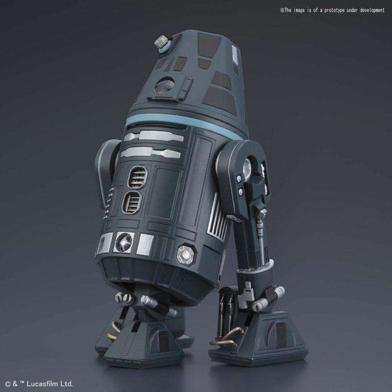 Star Wars Droid Collection R4-I9 1/12 Scale Model Kit - DECEMBER 2018