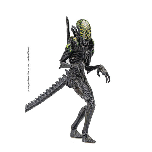 AVP Grid Alien PX 1/18 Scale Figure - JULY 2021