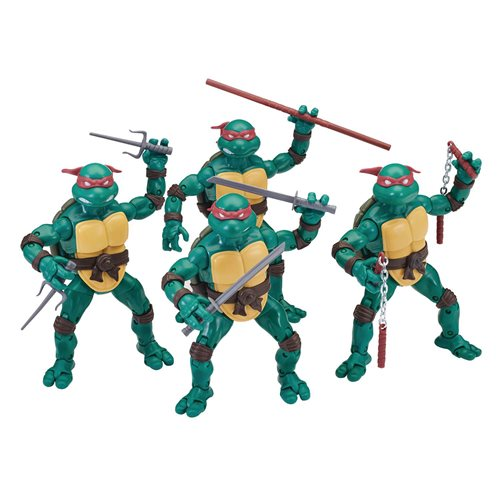 TMNT Ninja Elite Series Action Figure Case - PX - JANUARY 2021