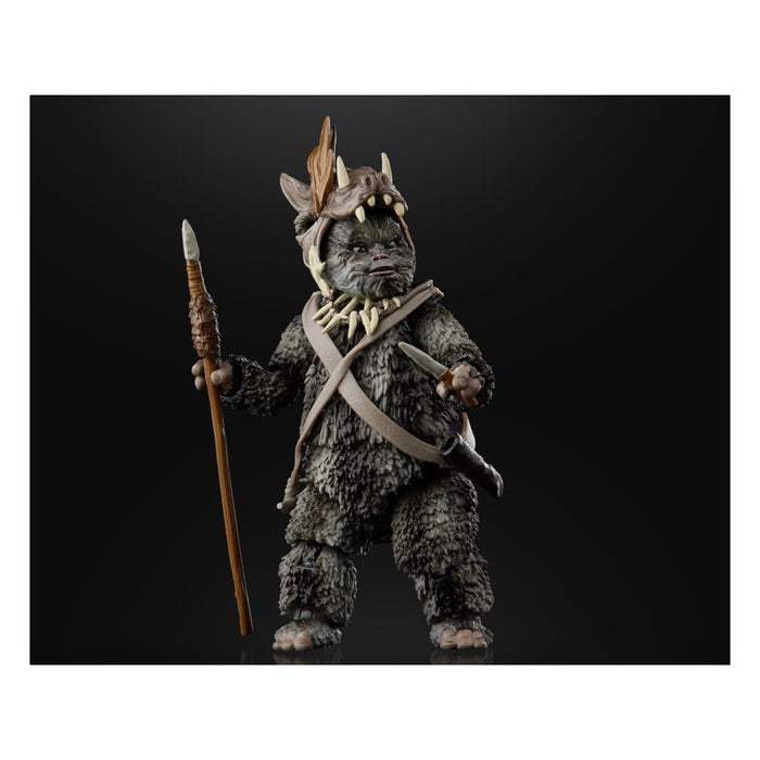 Star Wars The Black Series Wave 5 (2020) Teebo the Ewok 6-Inch Action Figure - AUGUST 2020