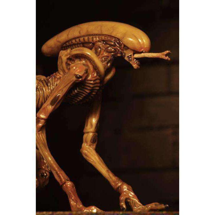 Alien 3 Creature Accessory Pack - MAY 2019