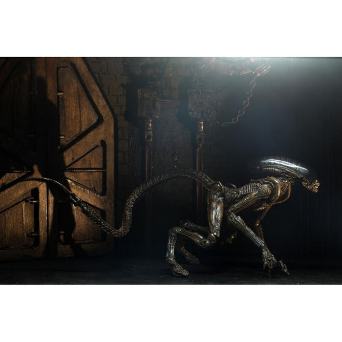 "Alien 3 - 7"" Scale Action Figure - Ultimate Dog Alien"