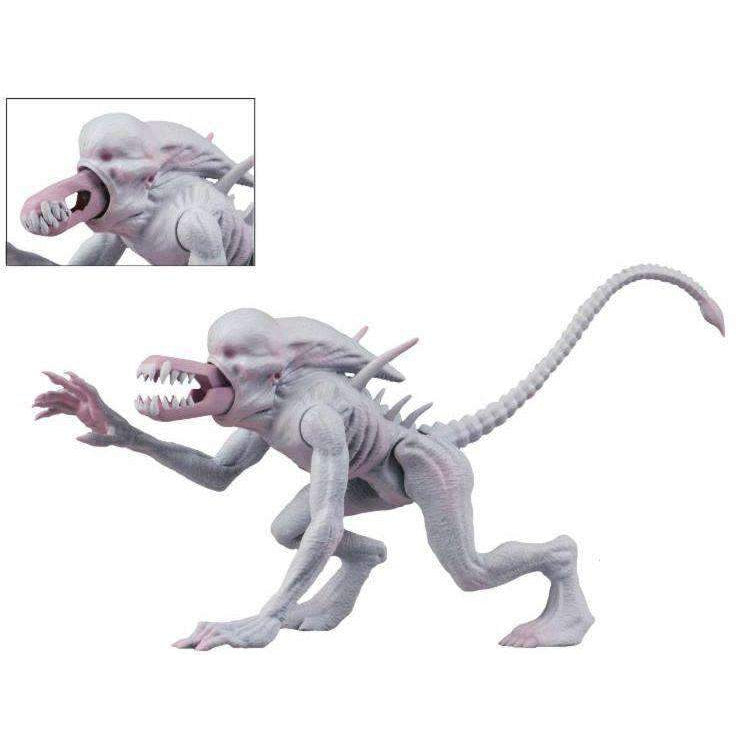 "Alien & Predator Classics - 6"" Scale Action Figure - Assortment - Q3 2019"