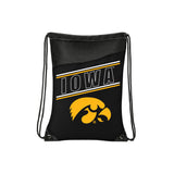 Iowa Hawkeyes Backsack Incline Style