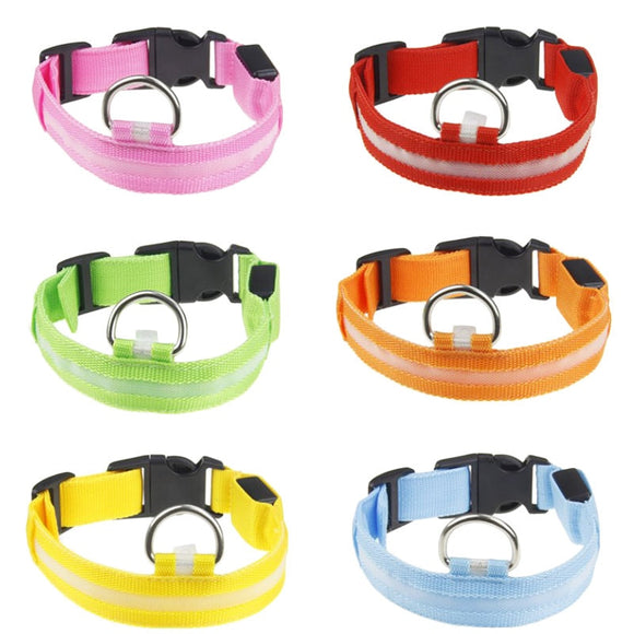 Night Dusk Safety LED Light-Up Dog Glow Collar