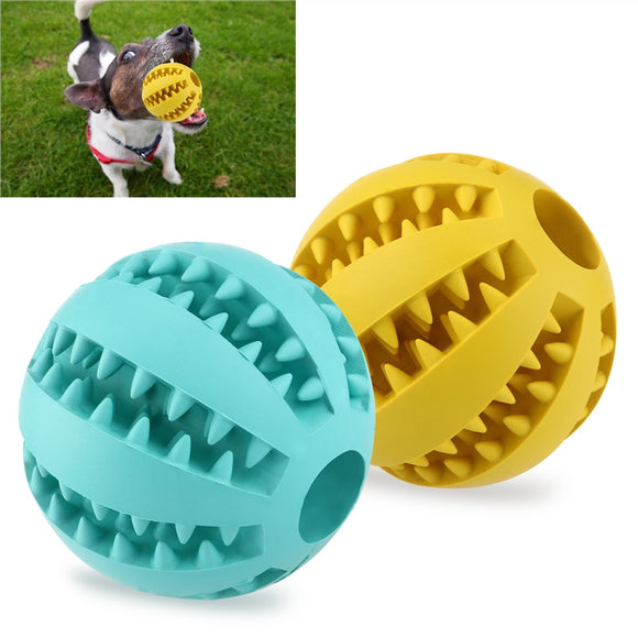 Dog Chew Balls 2 Rubber Squeaky Toys