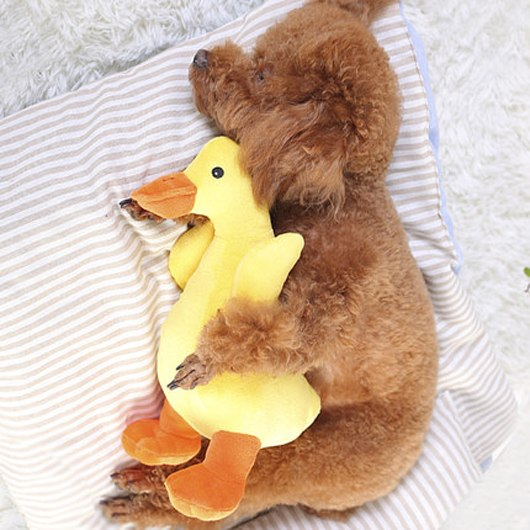 Duck Squeaky Chew Toy For Dogs Durable Plush