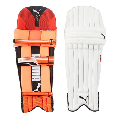 Puma EVO 6 Batting Pads