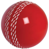 Gray-Nicolls Velocity Junior Ball