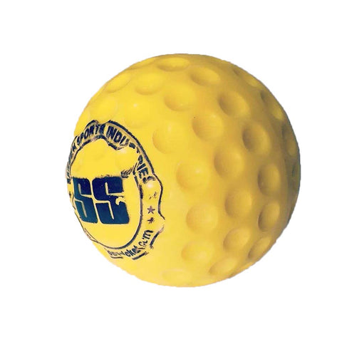 SS Bowling Machine Ball
