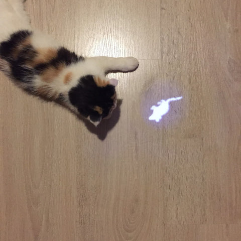 Image of LED Mouse Laser Toy