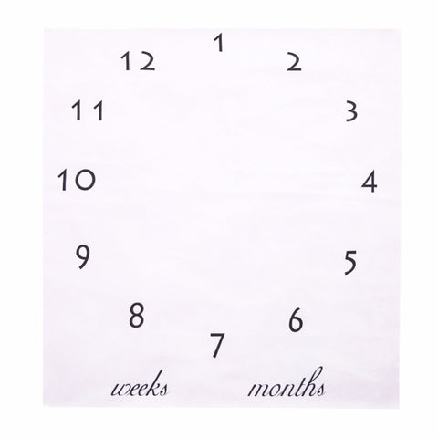 Image of The First Twelve Months