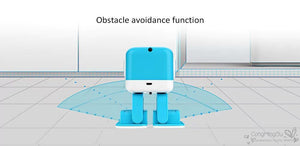 Educational Dancing Robot