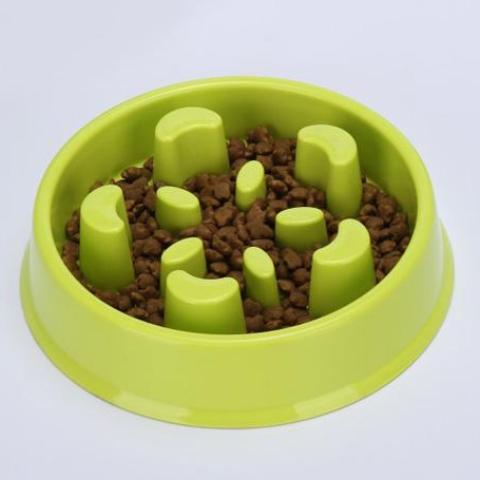 Slow Feed Dog Bowl