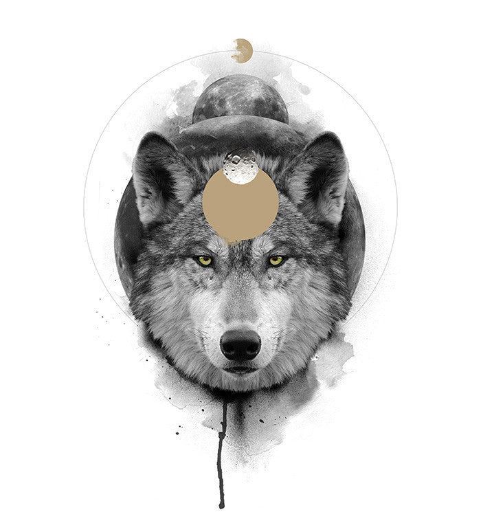 The Wolf / The Transformative