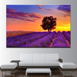 Lavender Field And The Sunset Canvas Art - Mystikz Gaming