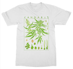 Cannabis T-Shirt