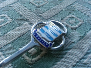 Antique Enamel Sterling silver spoon Clovelly Birmingham Bash British Empire