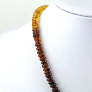 Genuine Baltic Amber beads necklace Honey red blood cognac
