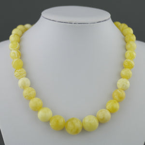 Elegant Genuine German 50.3g Baltic Amber graduate beads necklace Egg yolk Cloudy Milky White
