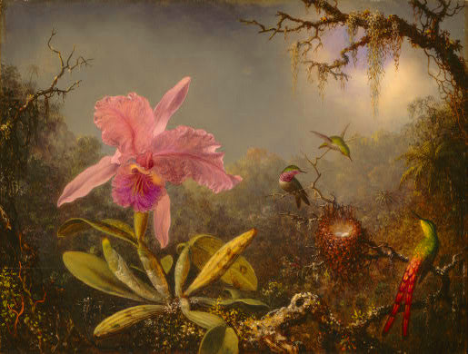 Martin Johnson Heade: Cattleya Orchid and Three Hummingbirds - Mouse Pad Universe