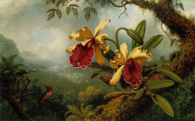 Martin Johnson Heade: Orchids and Hummingbird - Mouse Pad Universe