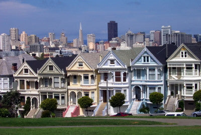 San Francisco Painted Ladies - Mouse Pad Universe