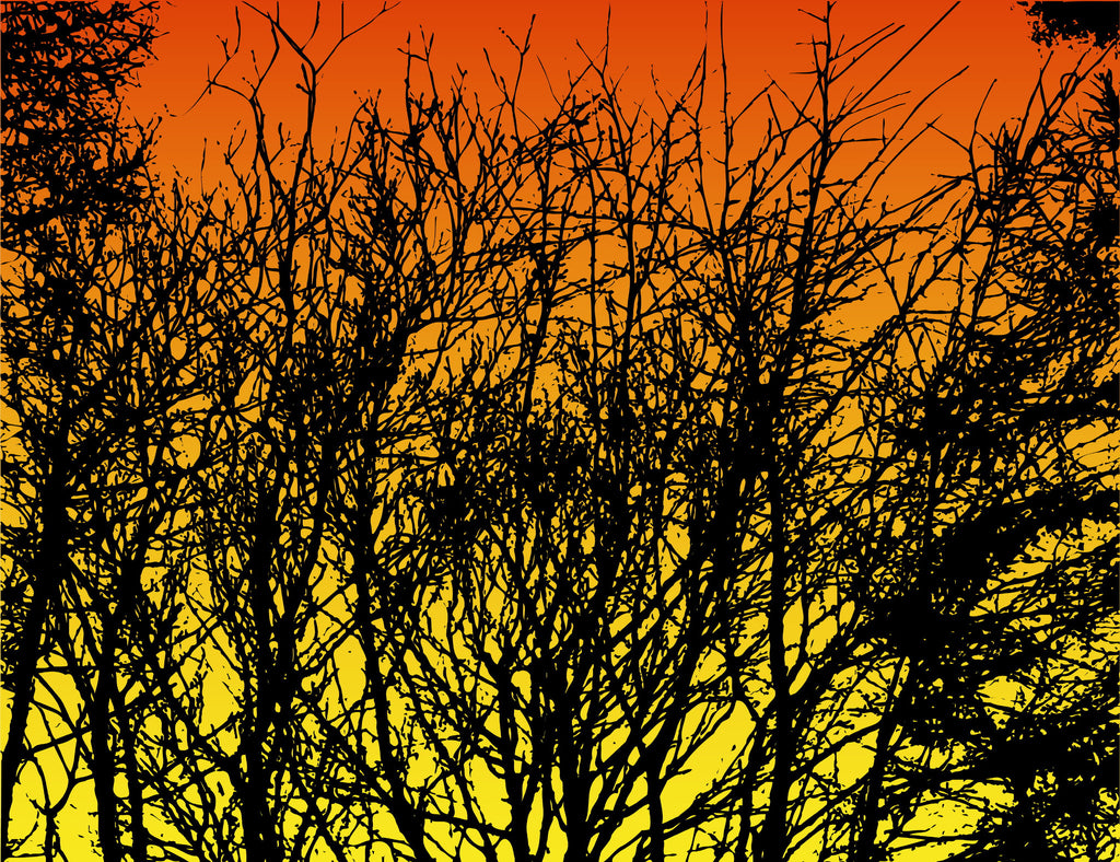 Trees at Sunset - Mouse Pad Universe