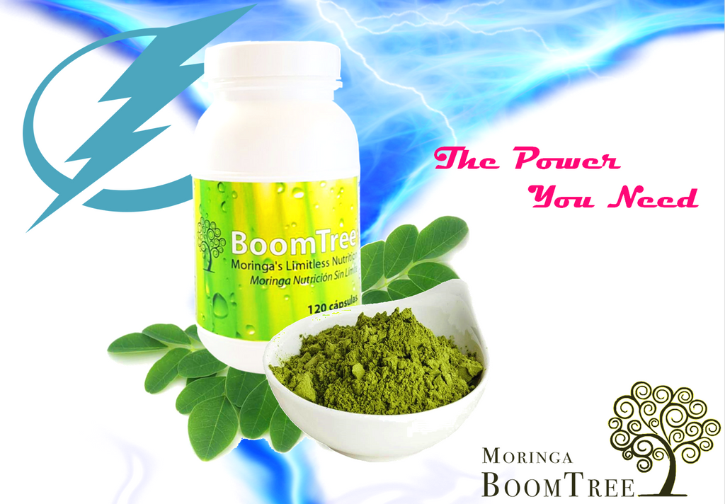 How does Moringa Increase Energy?