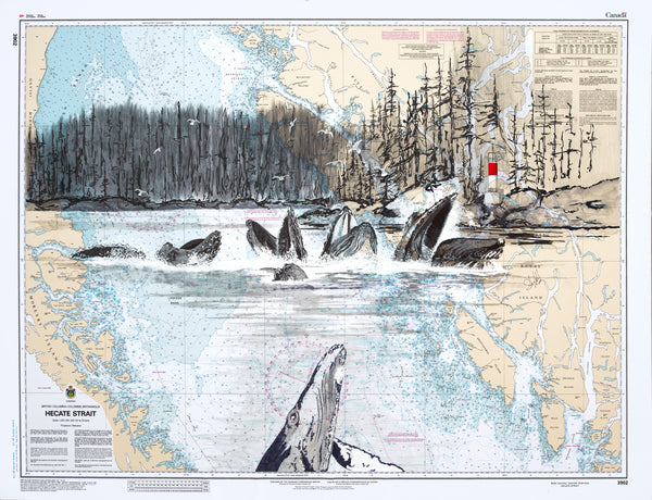 Raincoast Humpbacks