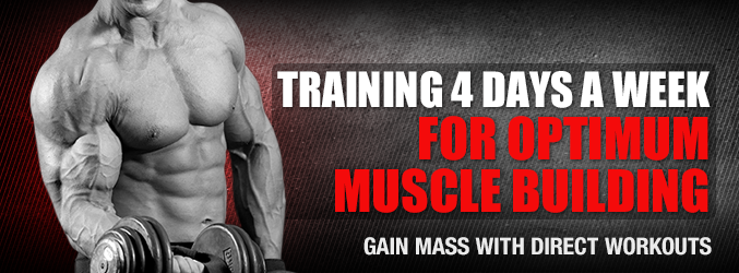 Training 4 Days A Week For Optimum Muscle Building
