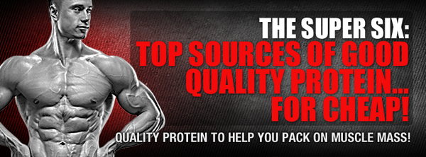 The Super Six: Top Sources Of Good Quality Protein... For Cheap!