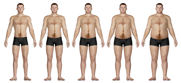 Ectomorph, Endomorph, Mesomorph… Adjusting Your Training To Match Your Body Type